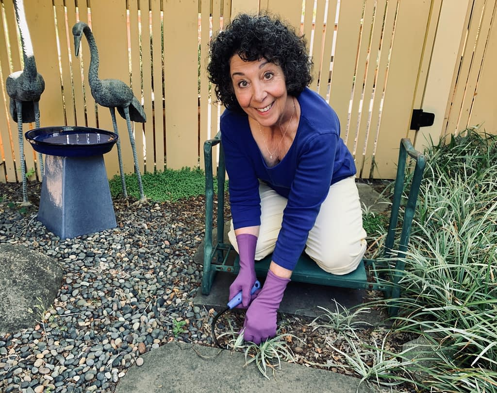Toni Gattone weeds with her mini Cobrahead as part of her Gardening Gives Me Hope blog post