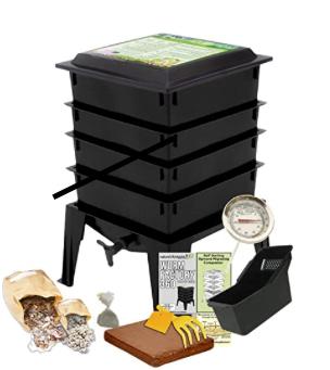 Toni Gattone's favorite worm bin